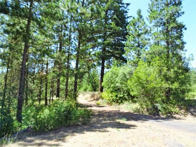 2 Owl Ridge Drive, Cle Elum, WA 98922 (#1805630) :: Stan Giske
