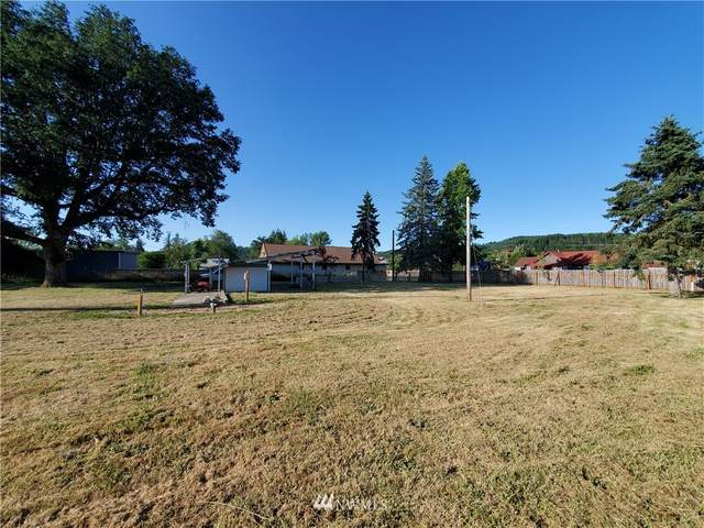 394 Boistfort Road, Chehalis, WA 98532 (#1806089) :: Lucas Pinto Real Estate Group
