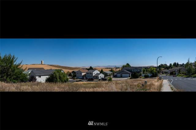 450 NW Terrview Drive NW, Pullman, WA 99163 (#1806732) :: The Snow Group