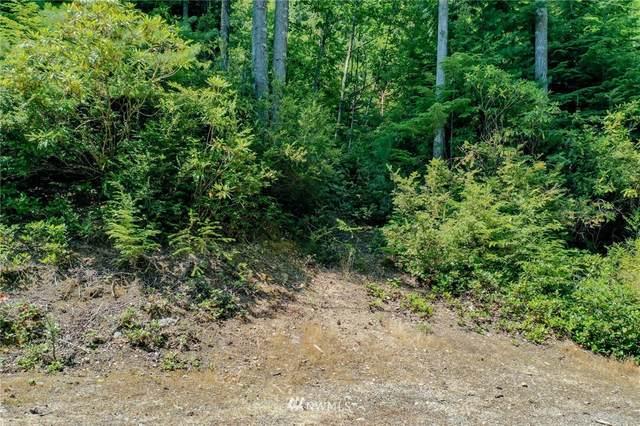 0 N Paradise Drive, Lilliwaup, WA 98555 (#1806888) :: M4 Real Estate Group