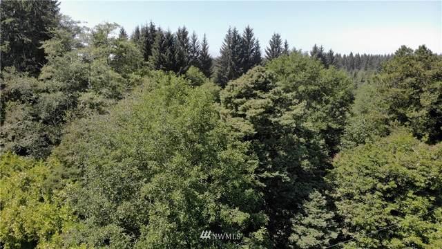 41 Mina Smith Road, Forks, WA 98331 (#1807156) :: The Kendra Todd Group at Keller Williams