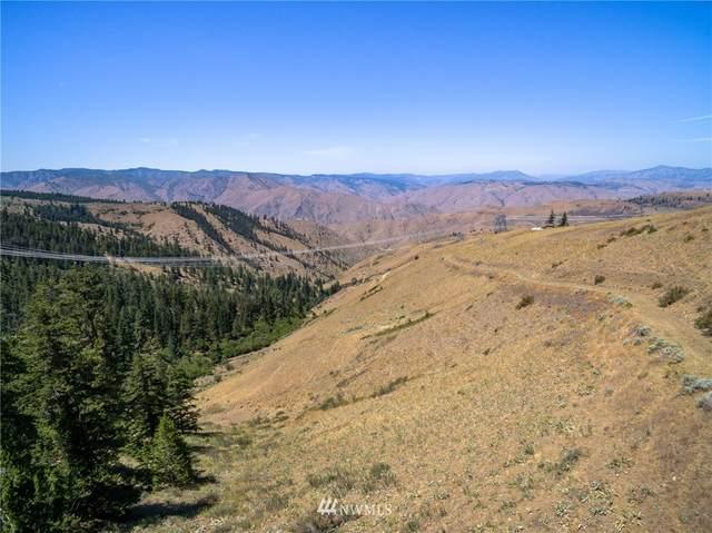 0 Tyee View Lot 18; Deer Creek B, Orondo, WA 98843 (#1807164) :: Northwest Home Team Realty, LLC