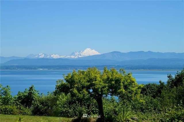 0 Cascade View Drive, Camano Island, WA 98282 (#1807640) :: Alchemy Real Estate