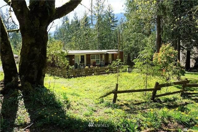7977 Santa Fe Trail, Maple Falls, WA 98266 (#1807937) :: Ben Kinney Real Estate Team