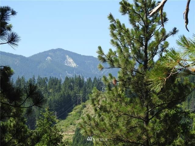 750 Snowberry Loop, Cle Elum, WA 98922 (MLS #1807987) :: Nick McLean Real Estate Group