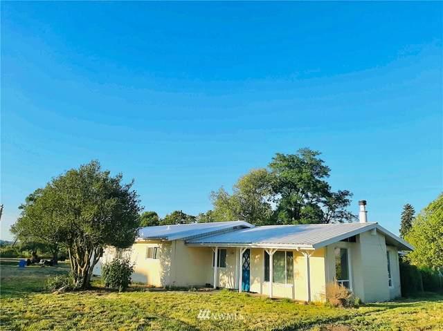 2405 Wildwood Road, Curtis, WA 98538 (#1808475) :: Lucas Pinto Real Estate Group