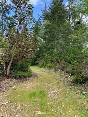 140 E Country Bumpkin Lane, Shelton, WA 98584 (#1808665) :: The Kendra Todd Group at Keller Williams