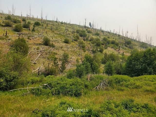 0 Mountain Road, Pomeroy, WA 99347 (#1808669) :: Better Properties Real Estate