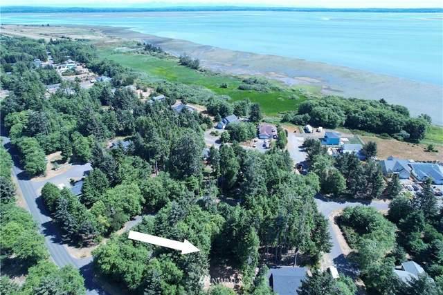104 Duck Lake Drive NE, Ocean Shores, WA 98569 (#1808731) :: Better Properties Lacey