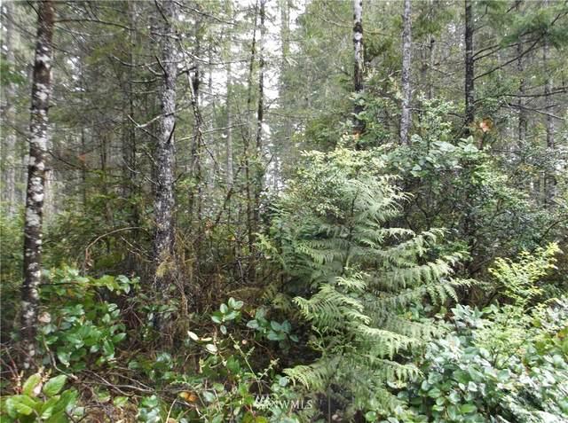 61 lot 62 Timber Tides Dr., Union, WA 98592 (#1808920) :: Northern Key Team