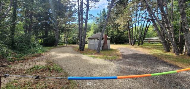 1301 323rd Place, Ocean Park, WA 98640 (#1809876) :: Shook Home Group