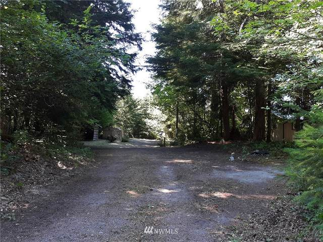 118 Mountain View Drive, Packwood, WA 98361 (#1810284) :: Stan Giske