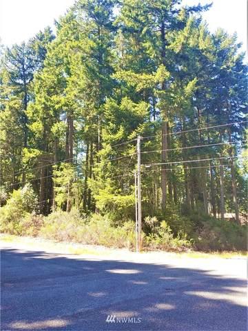 11307 Greenwood Drive, Anderson Island, WA 98498 (#1810668) :: Stan Giske