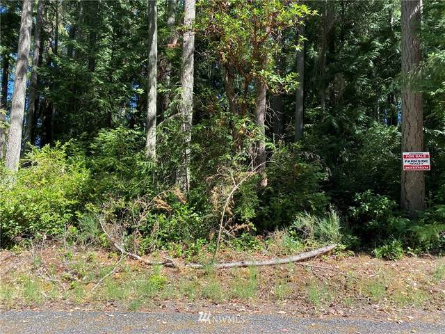 8915 126th Ave Ct, Anderson Island, WA 98303 (#1810684) :: The Snow Group
