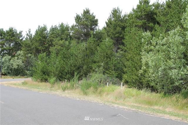 2 Driftwood Lane, Westport, WA 98595 (#1810708) :: The Kendra Todd Group at Keller Williams