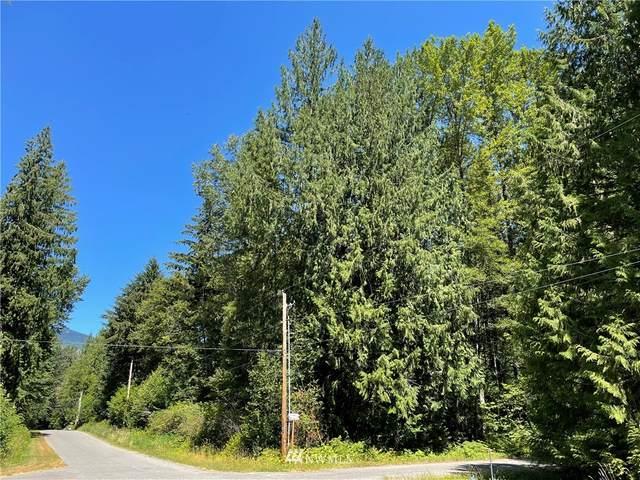 7534 Glacier Springs Drive, Deming, WA 98244 (#1810968) :: Lucas Pinto Real Estate Group