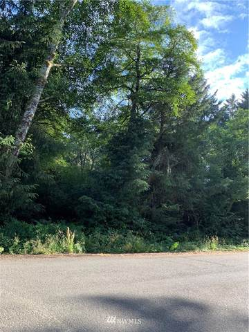 219 Douglas Drive, Oysterville, WA 99864 (#1811346) :: Lucas Pinto Real Estate Group