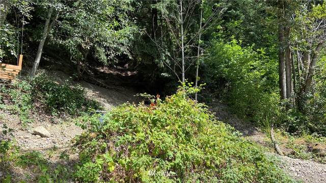 0 Dechaux Road E, Edgewood, WA 98371 (#1811544) :: Keller Williams Realty