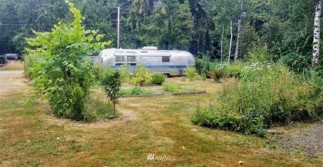 11 W Quillayute Trail, Elma, WA 98541 (#1811547) :: Lucas Pinto Real Estate Group