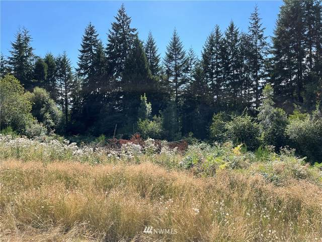 6035 49th Trail NW, Olympia, WA 98502 (#1811667) :: NW Home Experts