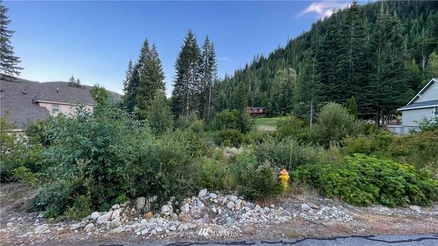 20644 Miracle Mile, Leavenworth, WA 98826 (#1811698) :: NW Homeseekers