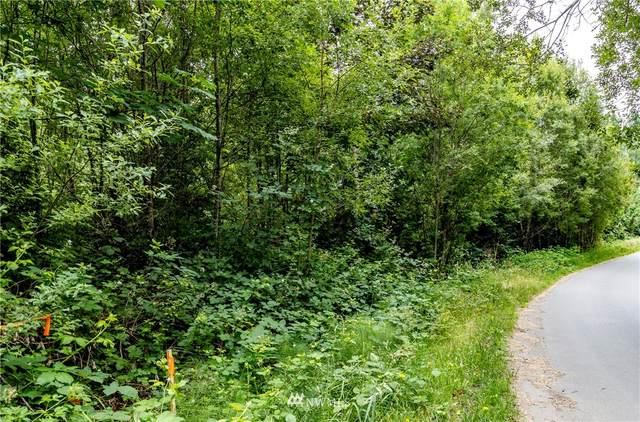 0 NE Tani Creek Road, Bainbridge Island, WA 98110 (#1811914) :: McArdle Team