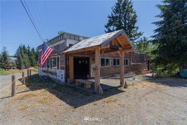 294903 Us Highway 101, Quilcene, WA 98376 (#1812266) :: Franklin Home Team