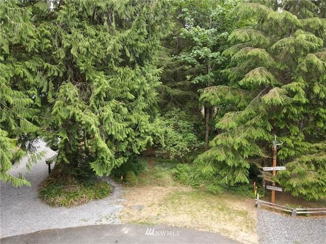 14039 Chimney Lane, Deming, WA 98244 (MLS #1812670) :: Reuben Bray Homes