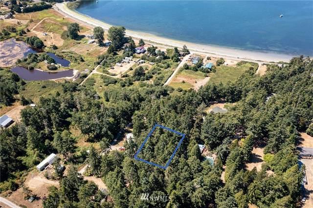 101 Gillnetter Lane, Lopez Island, WA 98261 (#1812879) :: Keller Williams Realty