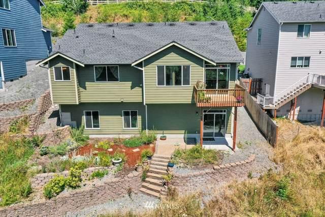 643 Joy Street, Eatonville, WA 98328 (#1813180) :: Better Properties Real Estate