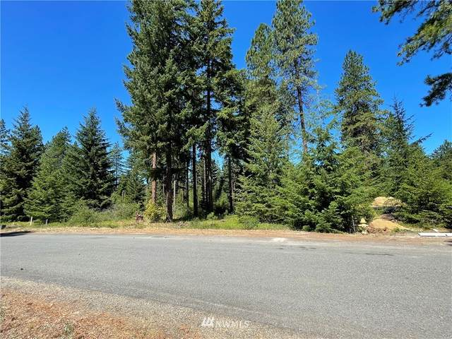 130 Bull Wheel Lane, Cle Elum, WA 98922 (MLS #1813254) :: Nick McLean Real Estate Group