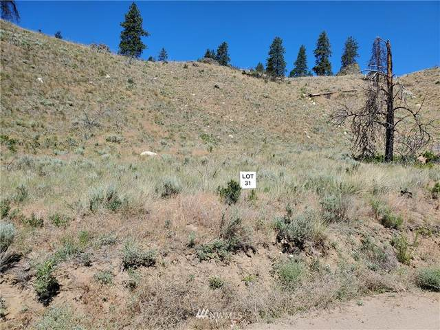 0 Spring Canyon Road, Orondo, WA 98843 (#1813349) :: Better Properties Real Estate