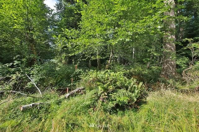 0 Walden Loop Way, Greenbank, WA 98253 (#1813423) :: The Shiflett Group