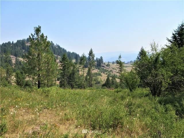 0 Coyote Ridge Road, Malo, WA 99150 (#1813525) :: Ben Kinney Real Estate Team