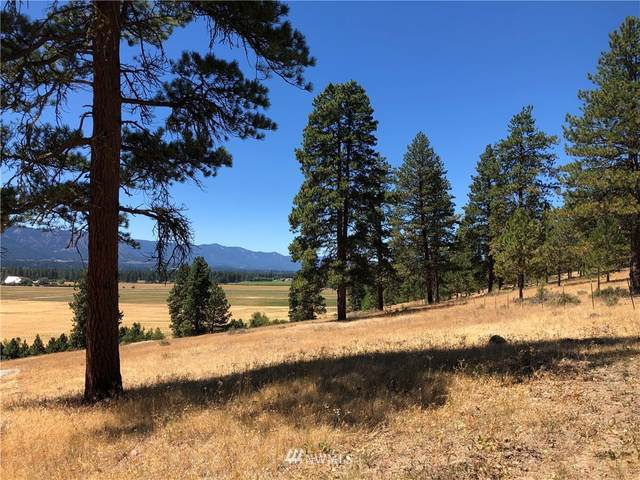 0 Lot A Masterson Road, Cle Elum, WA 98922 (#1813577) :: Lucas Pinto Real Estate Group