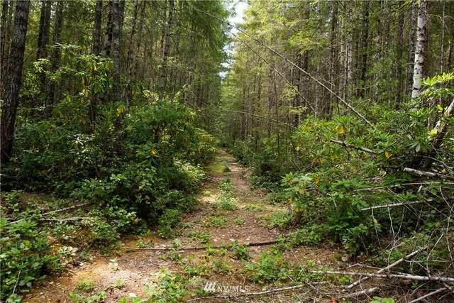 1 W Camp Sundown Rd, Bremerton, WA 98312 (#1813652) :: Keller Williams Western Realty
