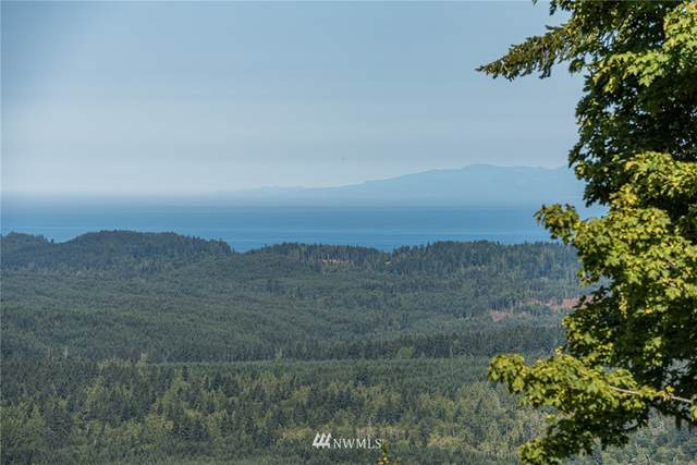 262 Break View Road, Port Angeles, WA 98363 (#1814317) :: Better Homes and Gardens Real Estate McKenzie Group