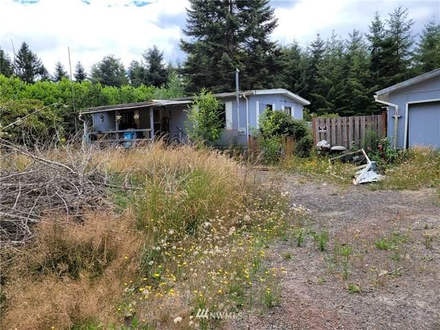 173 Riverview Drive, Castle Rock, WA 98661 (#1814324) :: Lucas Pinto Real Estate Group