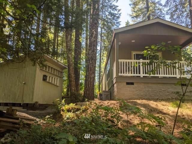 282 Heslen, Carson, WA 98610 (#1814489) :: Neighborhood Real Estate Group
