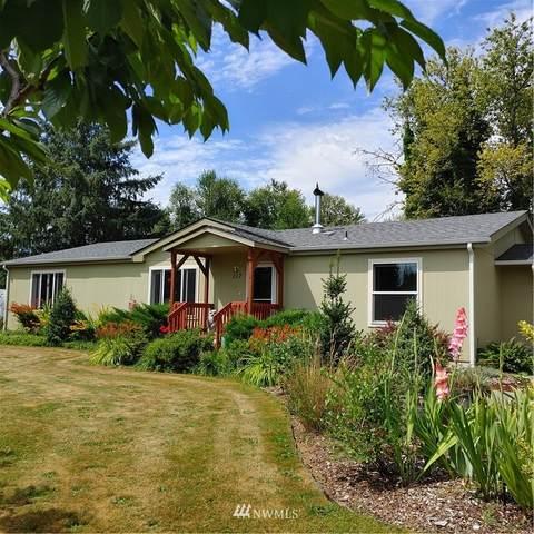 117 Cindee Lane, Mossyrock, WA 98564 (#1815666) :: Ben Kinney Real Estate Team