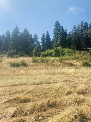 0 Lot 4-A Ranch Road, Cle Elum, WA 98922 (#1815682) :: Better Properties Real Estate
