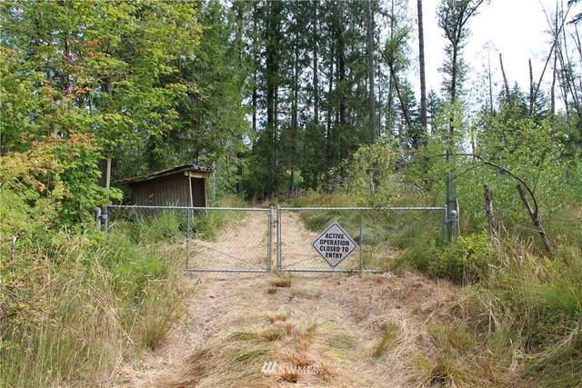 482 Stankey Road, Castle Rock, WA 98611 (#1815693) :: Lucas Pinto Real Estate Group
