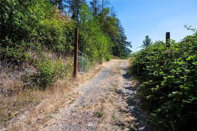 6869 State Route 20, Anacortes, WA 98221 (#1816172) :: The Shiflett Group