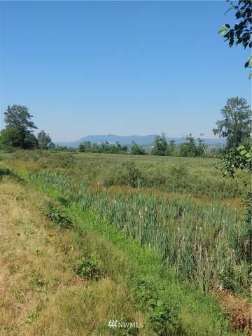 0 Pioneer Highway, Mount Vernon, WA 98274 (#1816216) :: NW Homeseekers