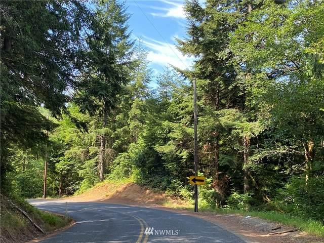 0 Stamper Road, Elma, WA 98541 (#1816247) :: Ben Kinney Real Estate Team