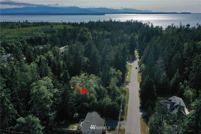 454 Gramayre Road, Coupeville, WA 98239 (#1816311) :: NW Homeseekers