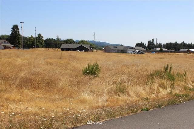 0 Bennett Lane, Oakville, WA 98568 (#1816398) :: Better Properties Real Estate
