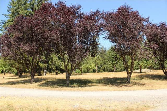 0 Sargent Rd Sw Road SW, Rochester, WA 98579 (#1816568) :: NW Homeseekers