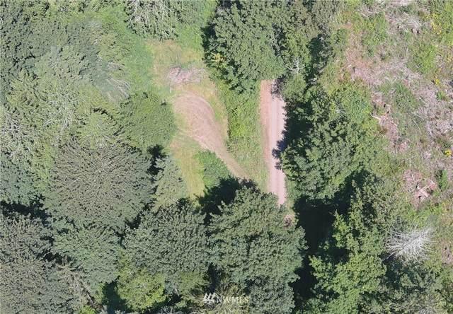 443 Crocker Lake Road, Quilcene, WA 98376 (#1816814) :: Alchemy Real Estate