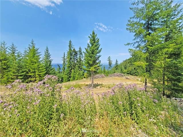 2890 Rocky Mountain Way, Cle Elum, WA 98922 (#1817015) :: Ben Kinney Real Estate Team